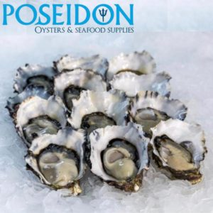 FRESH FISH - Pacific Oysters from Southern regions of Australia. **FRESH DAILY Shucked/Opened to order** (order by 11.59pm for next day delivery) 1/2 doz or 1 doz